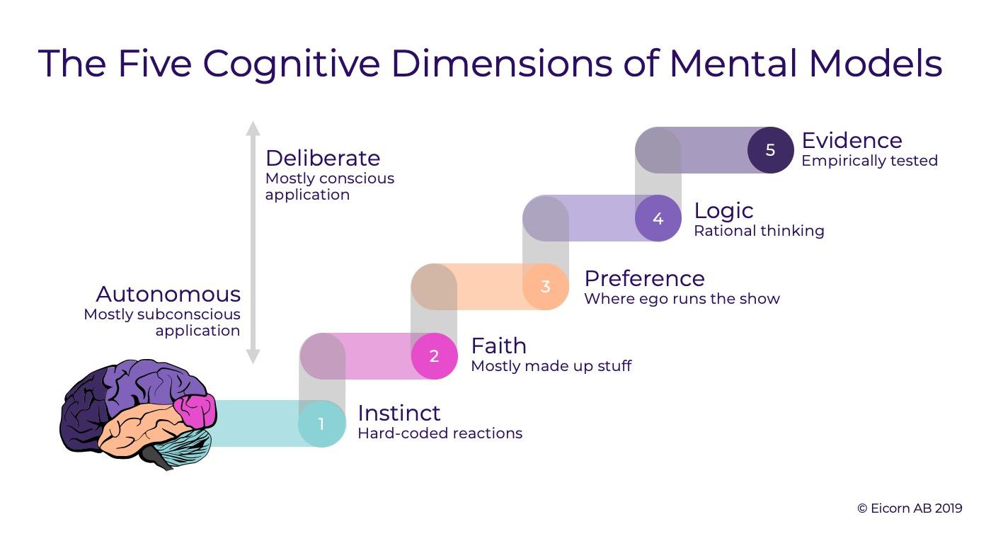 فرایند شکل گیری مدل های ذهنی چگونه است
