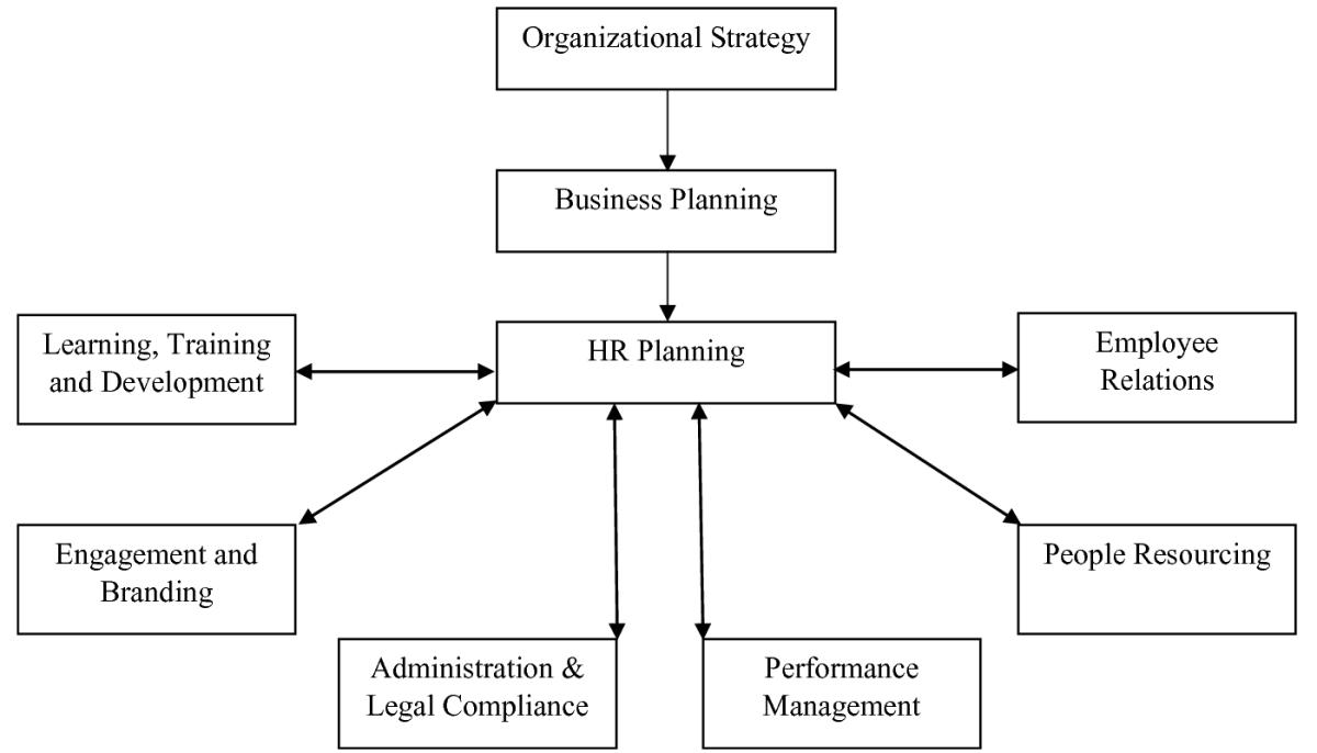 اقدامات و استراتژی منابع انسانی