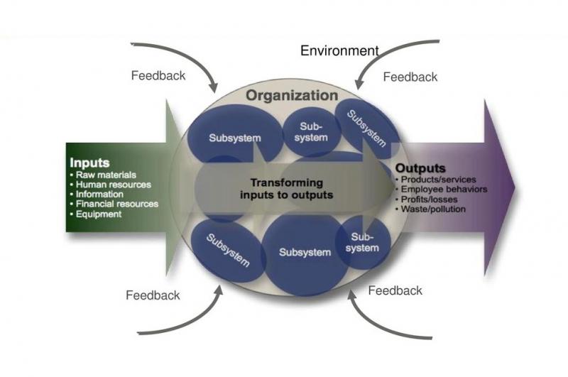 شمای کلی یک سازمان سیستم باز چگونه است