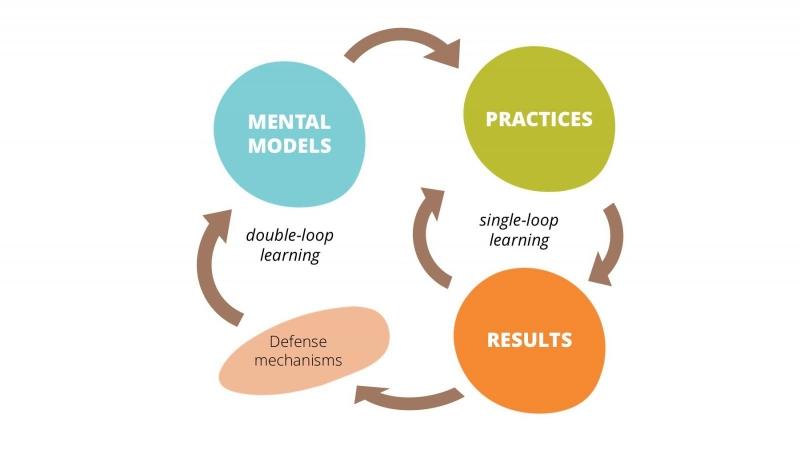 فرایند یادگیری سازمانی در سازمان های یادگیرنده
