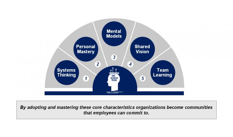 عوامل موثر در یادگیری سازمانی