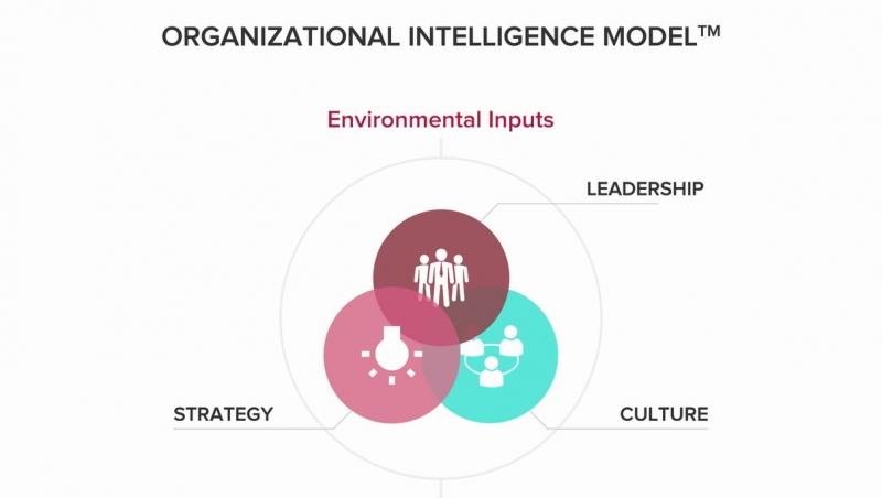 تعریف دقیق هوش سازمانی چیست