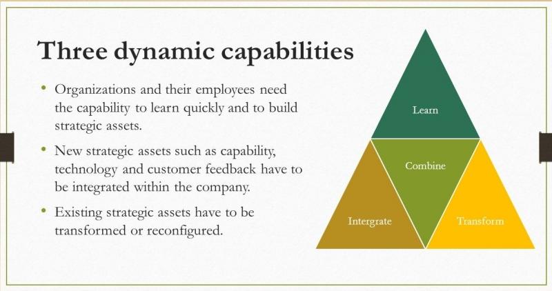 قابلیت های پویا در سازمان چطور میتوانند باعث رشد سازمان شوند
