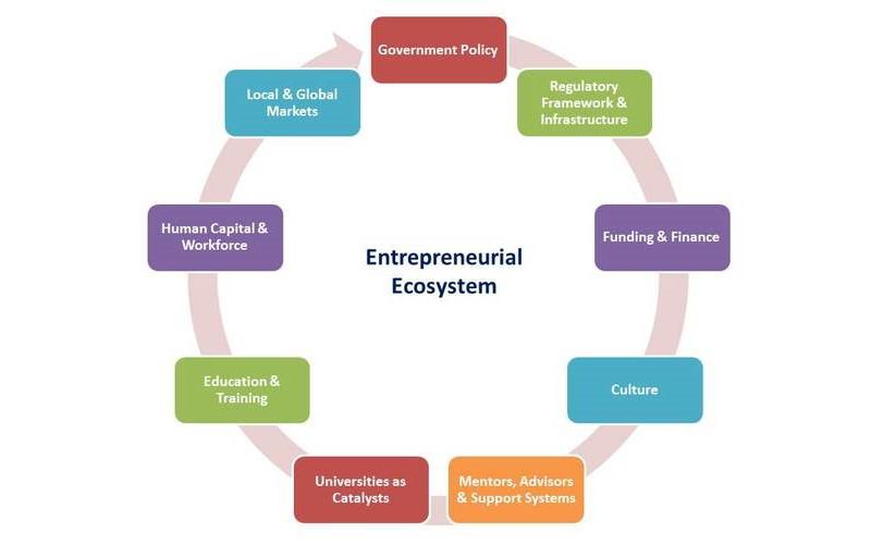 استراتژی کارافرینی در شرکتها و کسب و کارها چگونه اجرا میشود