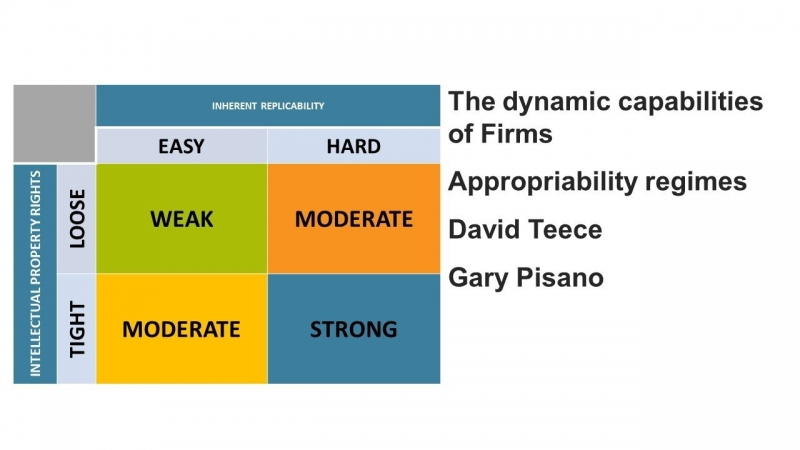 قابلیت های پویا در سازمان چگونه