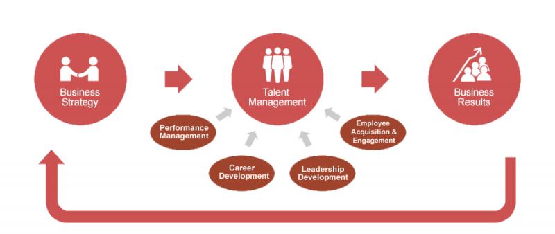 استراتژی های مربوط به مشاوره سازمانی و کسب و کار